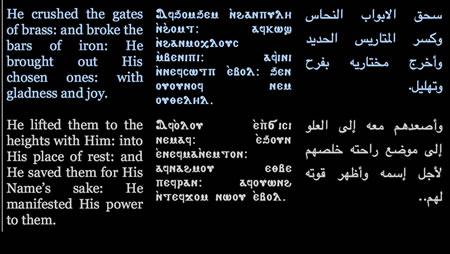 coptic reader for windows 10